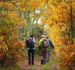 Marcha de otoño en Béjar
