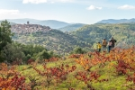 Historias en torno a las hogueras en San Miguel de Valero